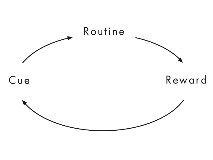 Image result for cue reward routine